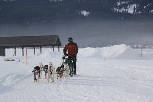 Stanley Sled Dog Rendezvous 2016